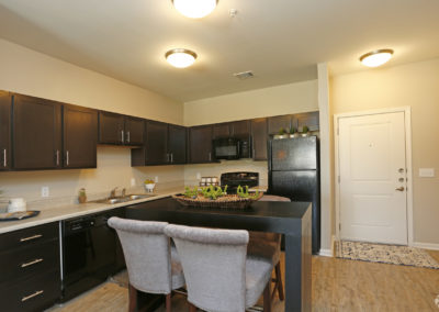 sansom-pointe-senior-sansom-park-tx-2br1ba---971sf-model---kitchen (1)