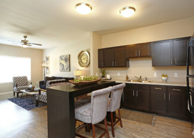 sansom-pointe-senior-sansom-park-tx-2br1ba---971sf-model---kitchen